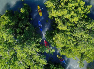 Kayak & SUP