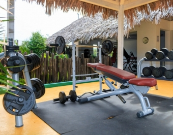 Profesional-gym